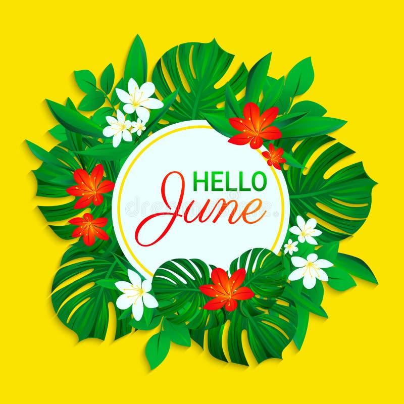 Olá! cartão de junho Projeto tropico do verão Folhas exóticas, flores Texto simples Fundo do vetor com quadro redondo colorido ilustração royalty free