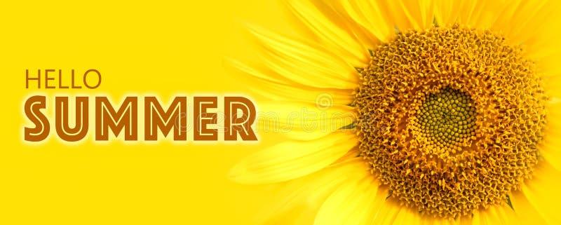 Olá! detalhes do close-up do texto e do girassol do verão na foto amarela do macro do fundo da bandeira fotografia de stock royalty free
