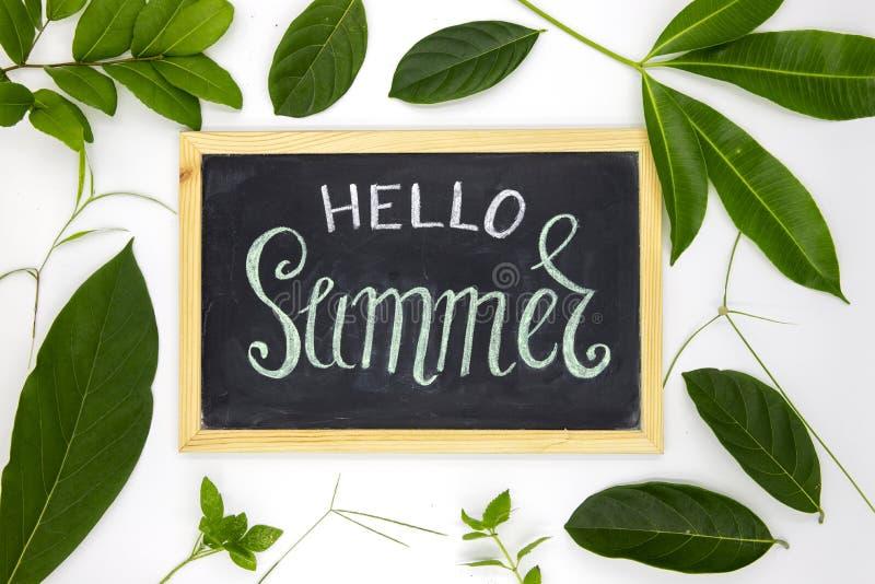 Olá! inscrição do verão pelo giz no quadro-negro com o ornamento verde da folha Olá! ilustração handdrawn do verão imagem de stock