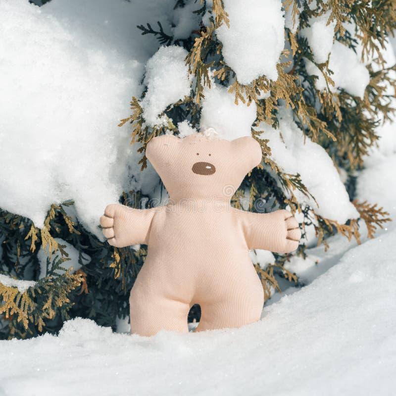 Olá! inverno, arbusto verde coberto com a neve com o brinquedo do urso do Natal de matéria têxtil foto de stock royalty free