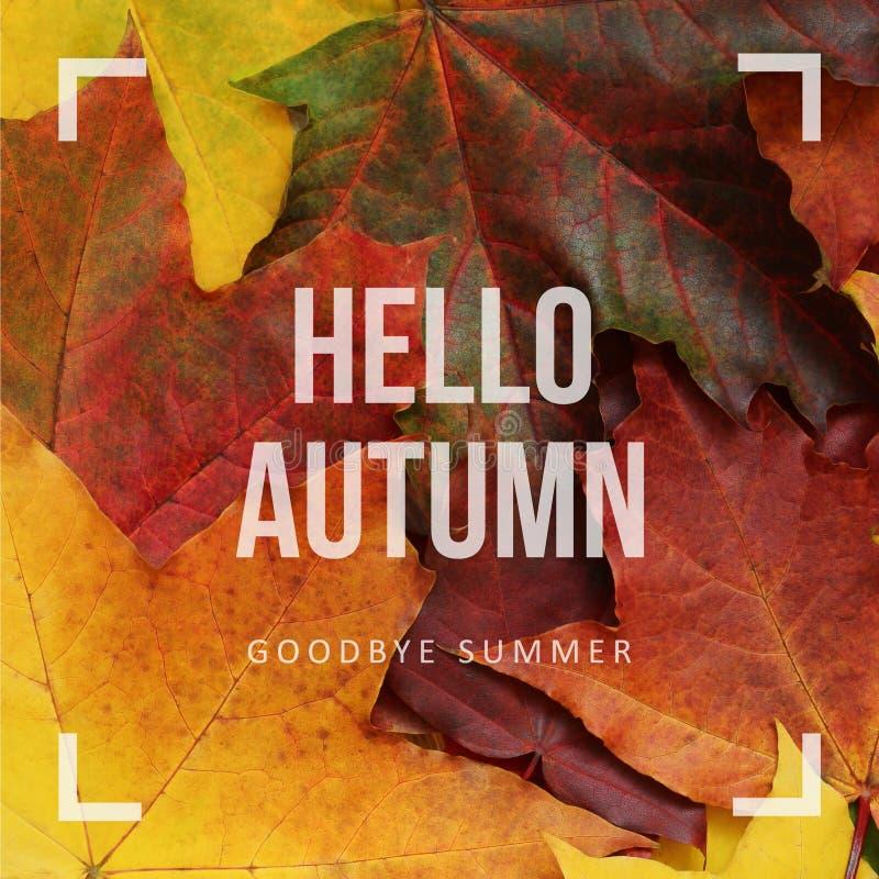 Olá! outono, adeus verão fotografia de stock royalty free