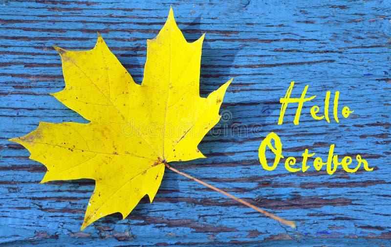 olá! outubro A folha de bordo dourada do outono em um azul coloriu a textura de madeira do vintage Fundo outonal com texto fotos de stock