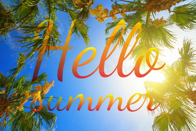 Olá! papel de parede das horas de verão, divertimento, partido, fundo, imagem, arte, projeto, curso, cartaz, evento foto de stock royalty free