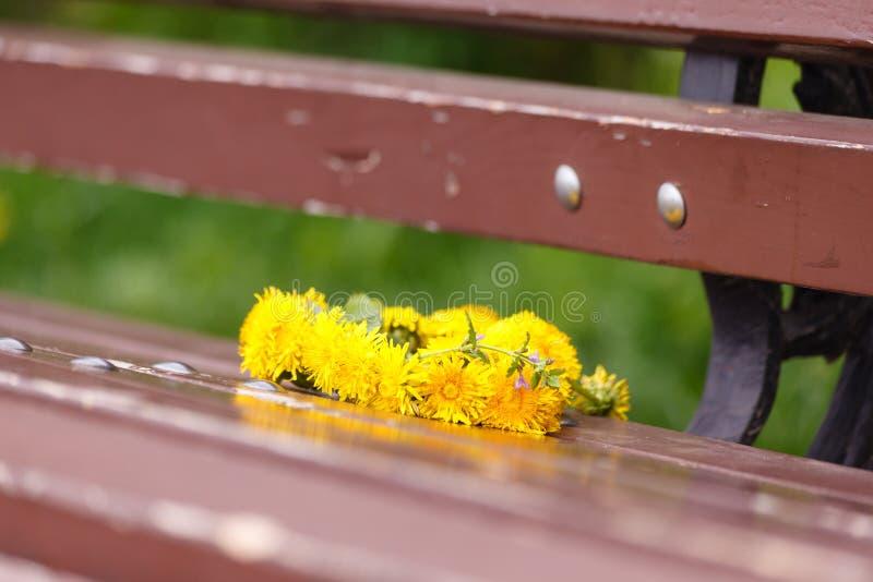Olá!, verão Uma grinalda dos dentes-de-leão em um banco de madeira No parque no verão Data romântica, declaração do amor foto de stock royalty free
