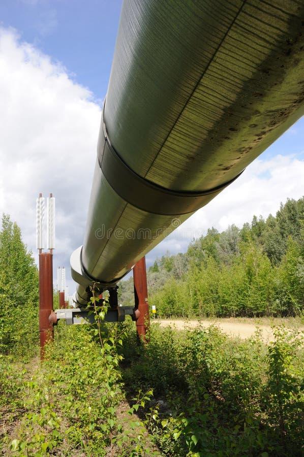 Oléoduc de transport Alaska photos libres de droits