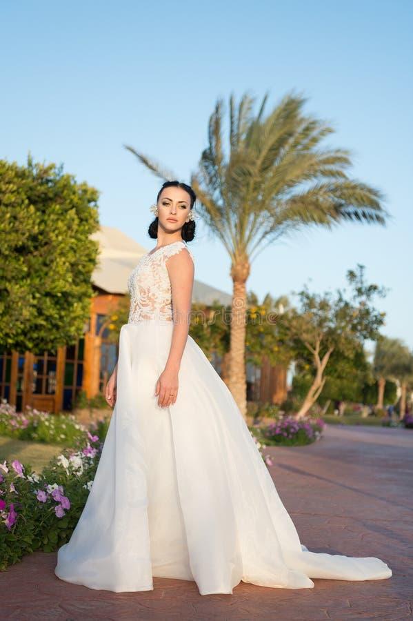 olśniewająco piękna Panny młodej ślubnej sukni słonecznego dnia zwrotnika natury luksusowy biały tło Zwrotnika ślub Perfect plase fotografia stock
