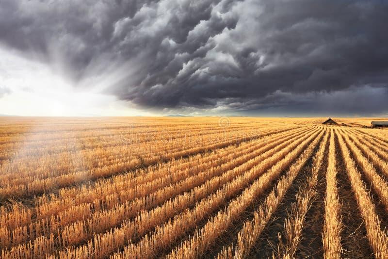 Olśniewający słońc olśniewający zerknięcia spod chmur obrazy royalty free