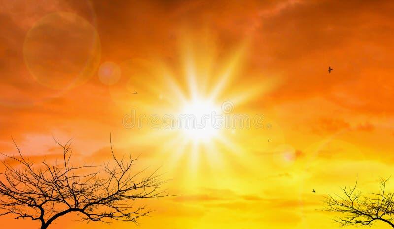 Ola de calor del fondo extremo del sol y del cielo Tiempo caliente con concepto del calentamiento del planeta Temperatura de la e foto de archivo libre de regalías