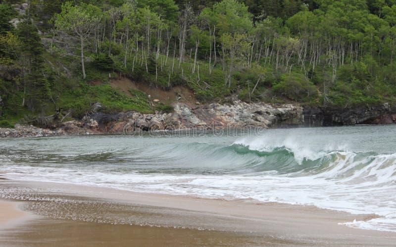 Ola oceánica en la playa arenosa imagen de archivo