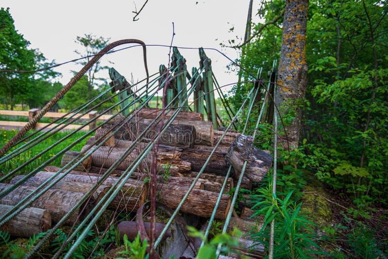 olaglig dumpster i träskogen i sommar arkivbilder