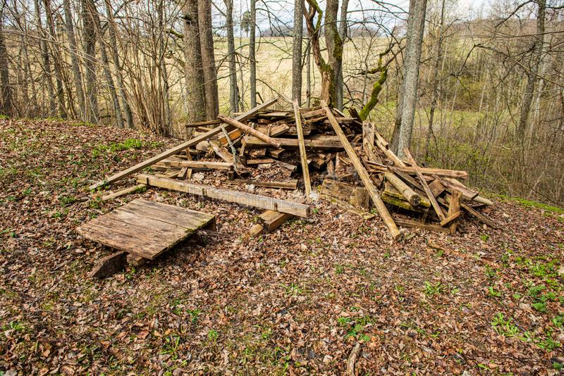 olaglig dumpster i träskogen i sommar royaltyfri foto