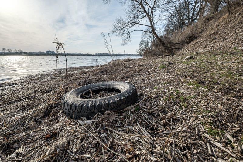 olaglig dumpster i träskogen i sommar fotografering för bildbyråer