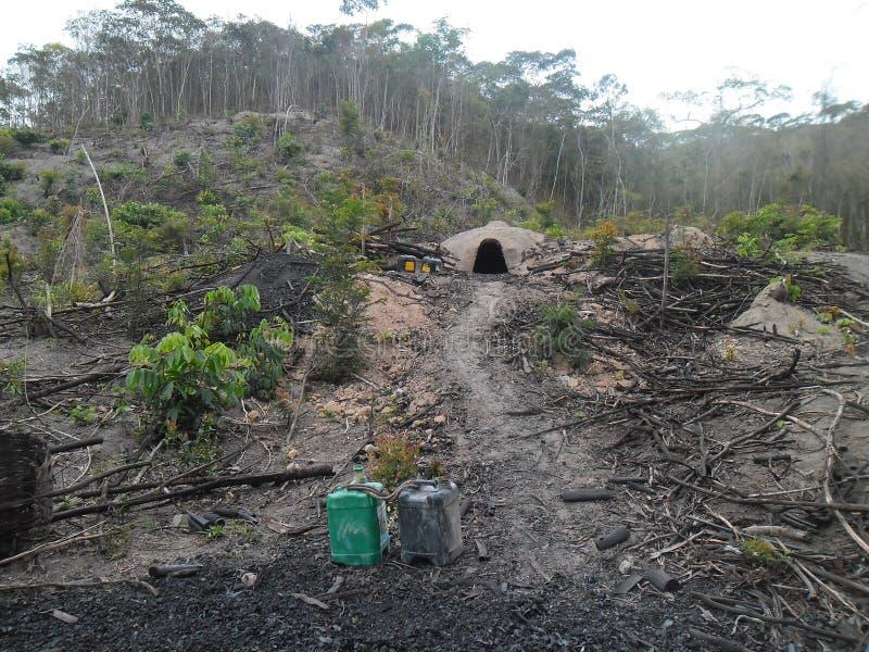 Olaglig produktion av kol i Mata Atlantica Forest - Brasilien royaltyfria foton