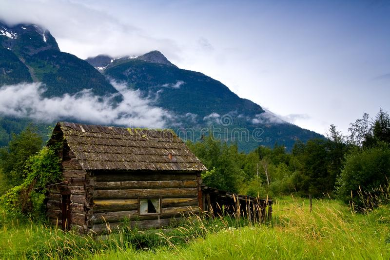 Old, abandoned cabin in an overgrown meadow. Bella Coola, BC, Canada stock photos