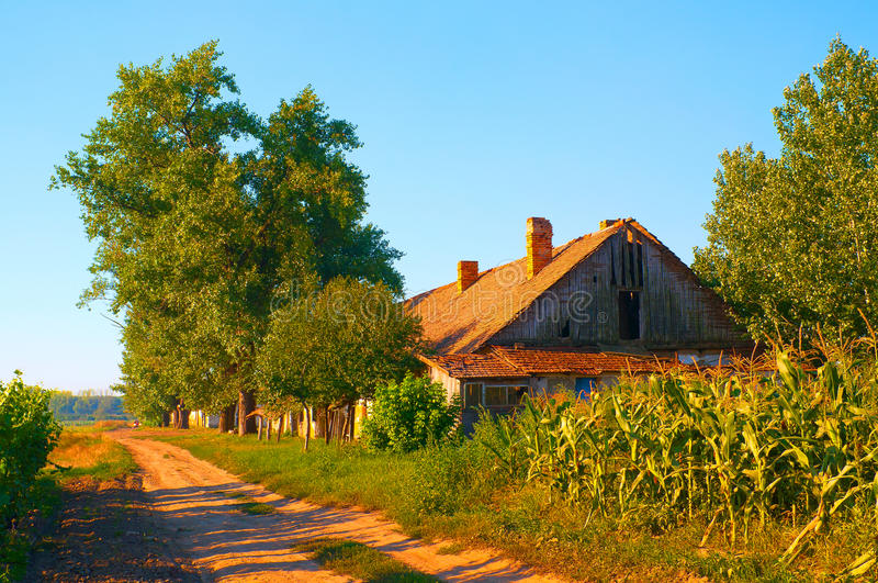 Old Abandoned Farm House On Sunny Summer Day Royalty Free