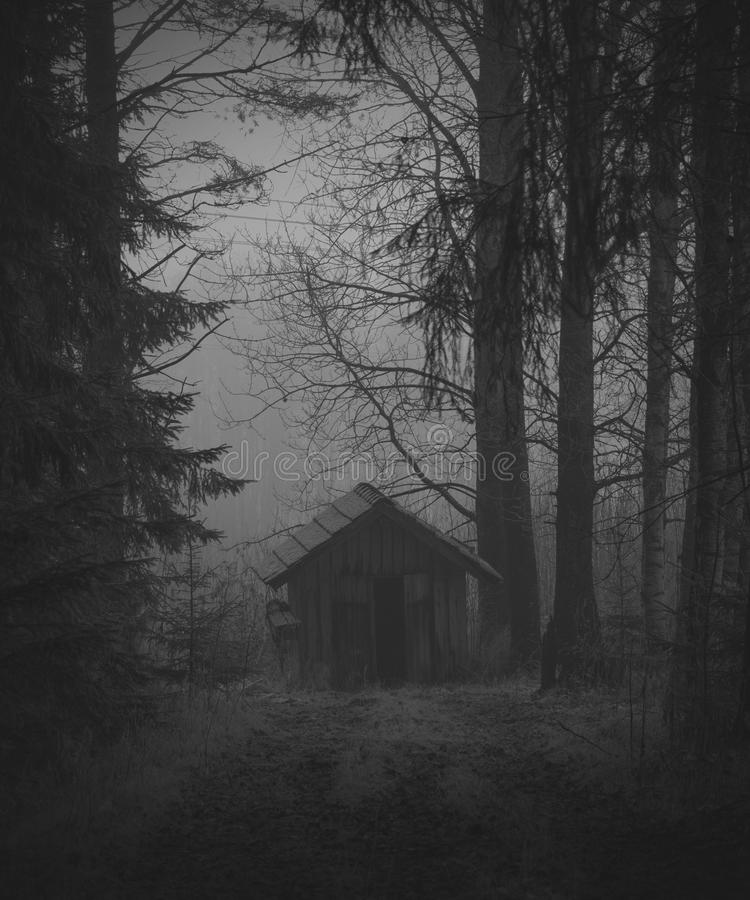 Old abandoned granary in woods stock images