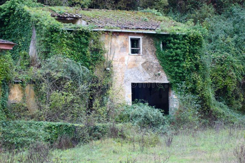 The old abandoned house in the mountains. The abandoned house in the mountains. Nobody is living there anymore. You can see the trees,plants growing free out royalty free stock photo