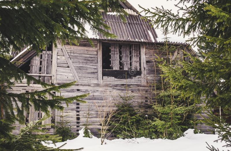 Old abandoned mysterious house in the forest royalty free stock photos