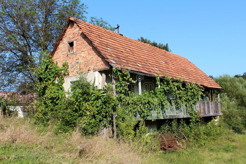 Old abandoned red brick family house with wooden porch completely overgrown with crawler plants with rusted agricultural tool left. Old abandoned red brick royalty free stock photo