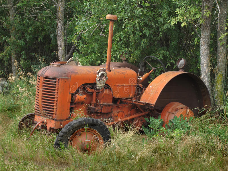 Old abandoned small farm tractor royalty free stock image