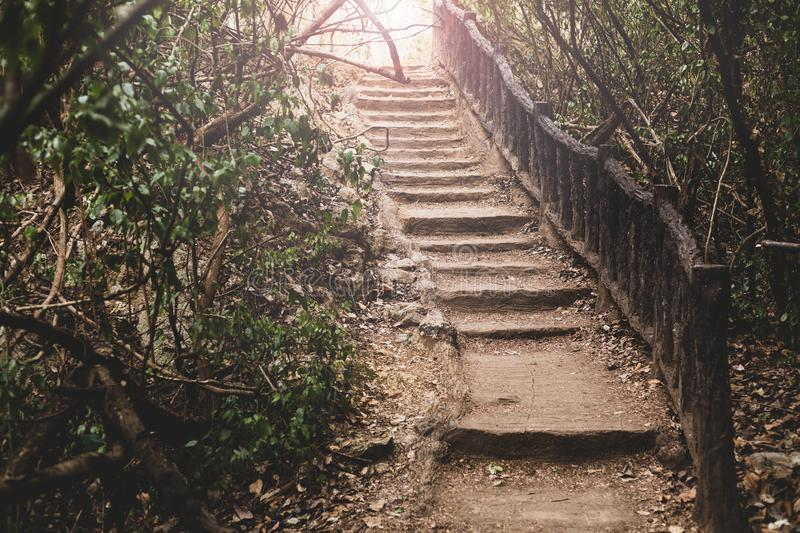 Old abandoned stairway in the park royalty free stock images