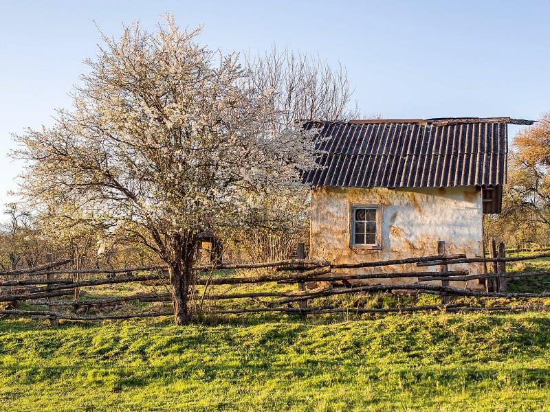Old abandoned village house.Log hut facade, fragment. Closeup. Russian villa stock photo