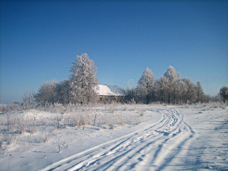 Old abandoned wooden house in a thicket of trees in a snowy field in cold winter day stock photo