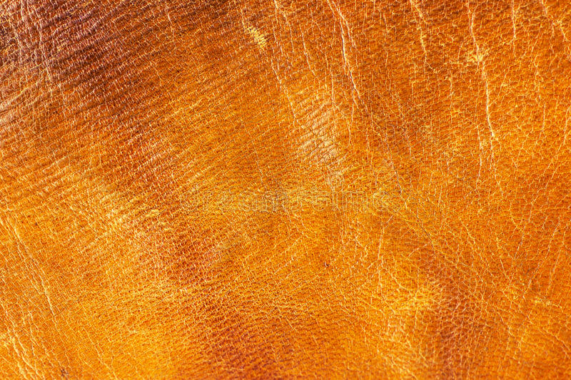 Old aged camel leather background. Texture, scratched, gradient yellow brown vivid colors stock photos