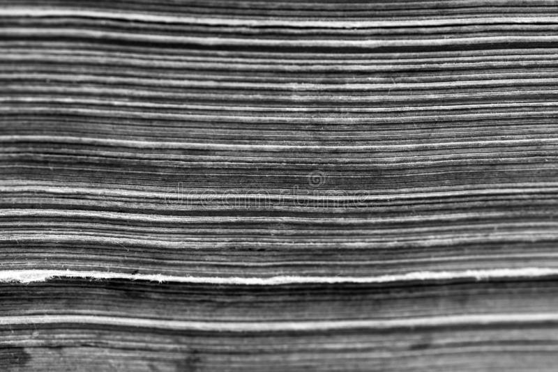 Old, aged horizontal book pages close up royalty free stock image