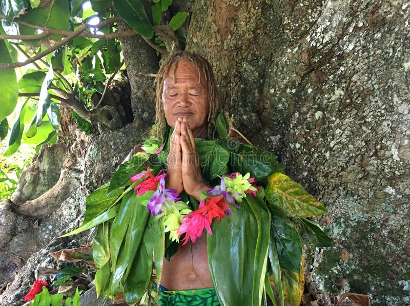 Old aged Pacific Islander man praying under a rain forest tree royalty free stock image