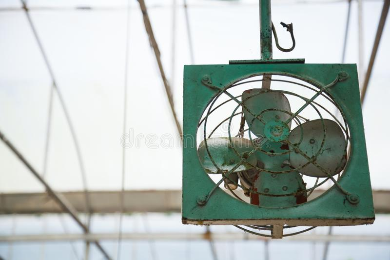 Old aged vintage retro rustic green indoor ceiling mechanical metal fan blower for air ventilation, temperature cooling control. In greenhouse, plantation stock photos