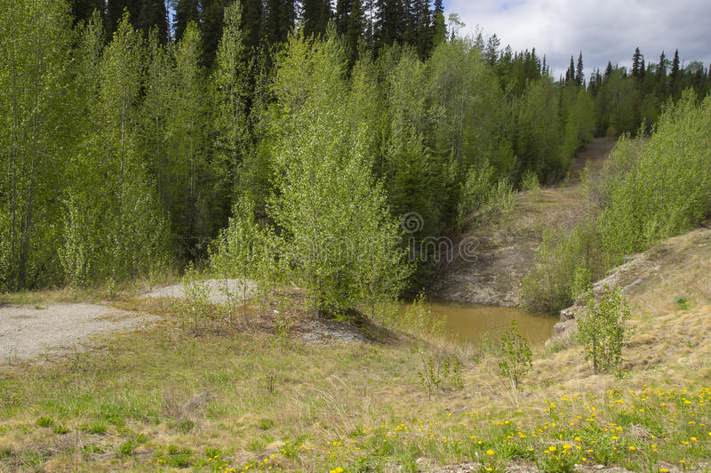 Download Old Alaska Highway Contact Creek Stock Photo - Image of british, creek: 51717068