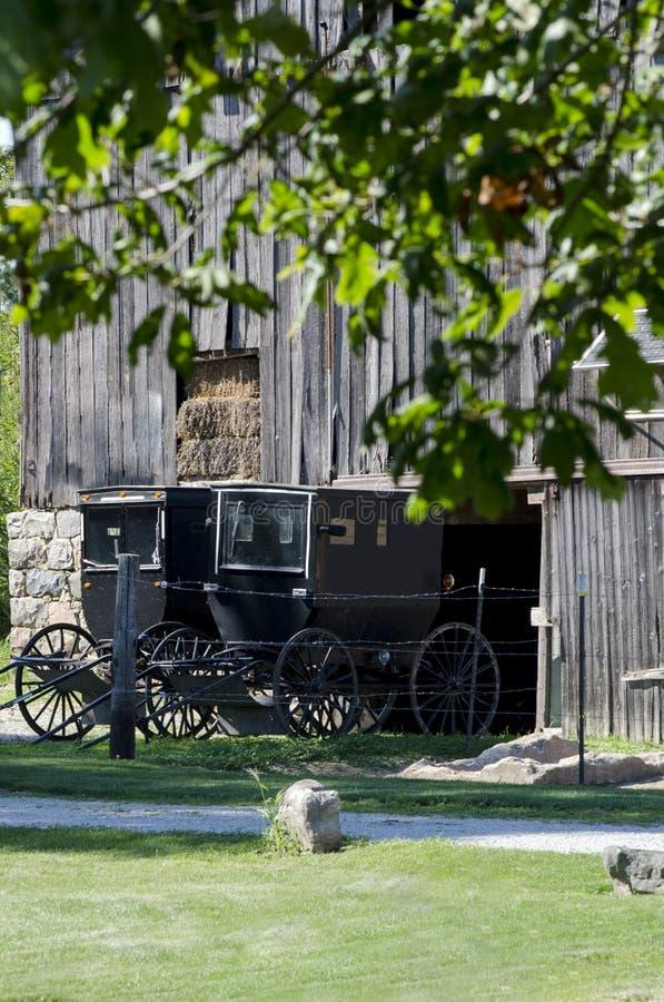 Old amish buggies royalty free stock photo
