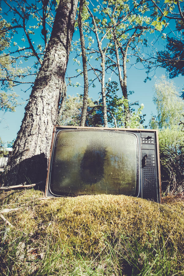 Old analog television in forest stock photography