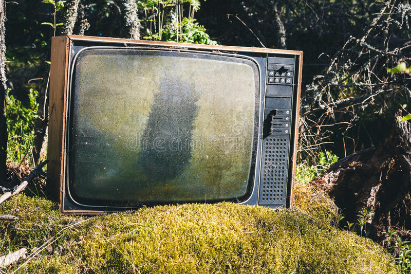 Old analog television in forest stock photo