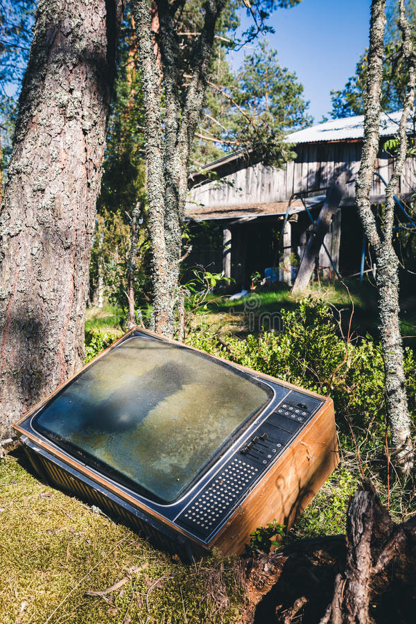 Old analog television in forest royalty free stock image