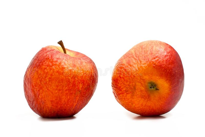 Old apples. Two old apples on a white background stock photos