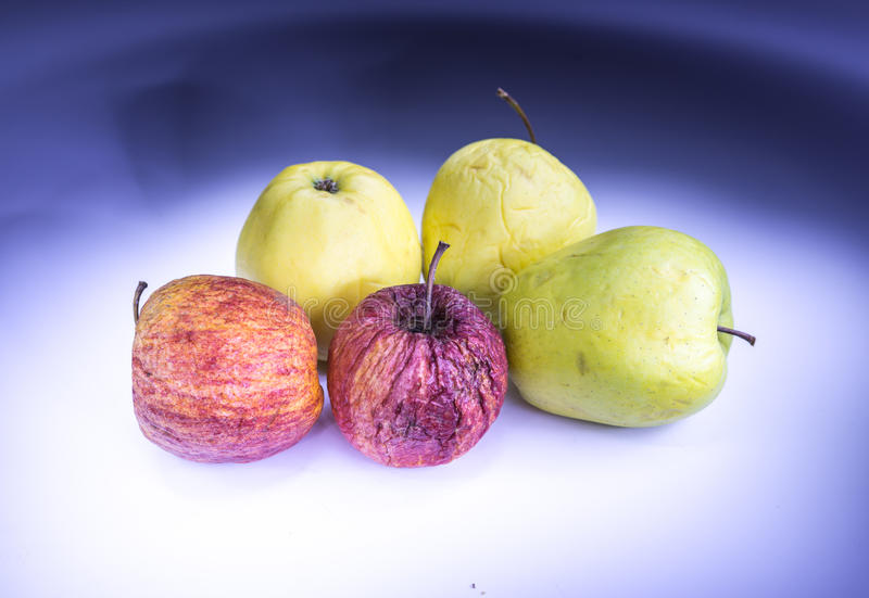 Old apples painted with light. Five old apples painted with light royalty free stock images