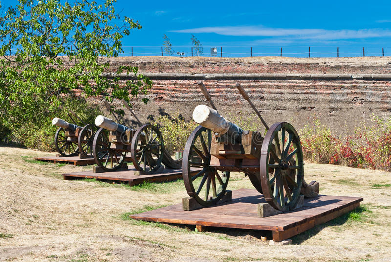 Old artillery cannons stock image