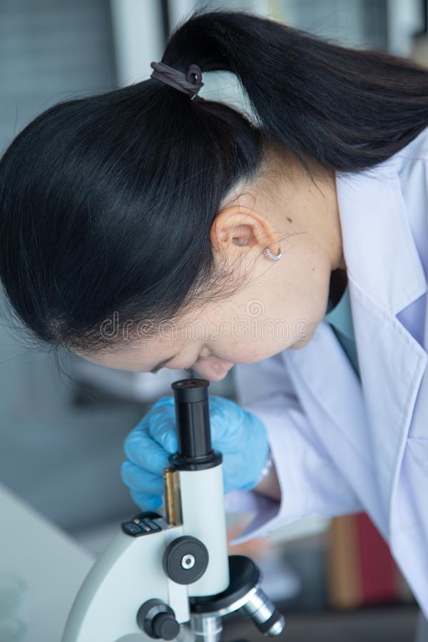 Old asia woman scientist look though microscope stock image