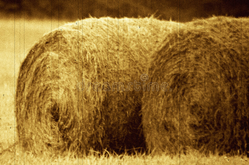Old bails of hay royalty free stock photo