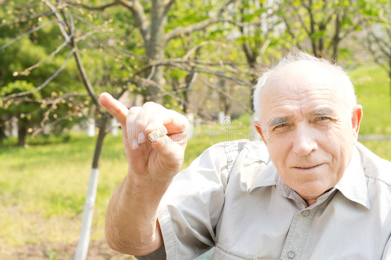 Old bald man royalty free stock photography