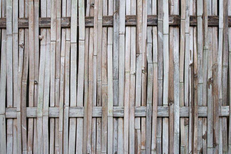 Old bamboo background stock image