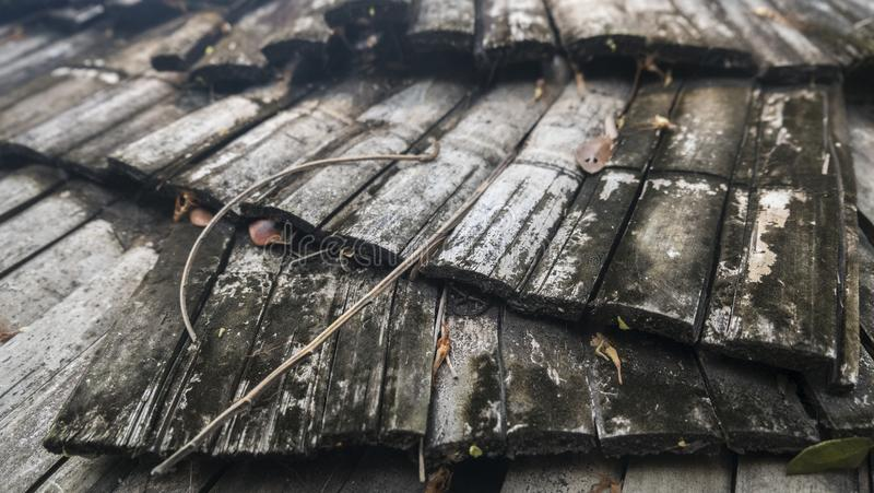 Old bamboo roof. Roofing with old bamboo structures of cottages or country houses Posed as a backdrop royalty free stock image