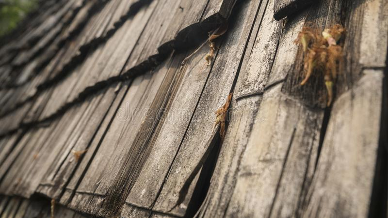 Old bamboo roof. Roofing with old bamboo structures of cottages or country houses Posed as a backdrop stock images