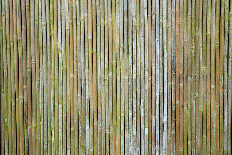 Old bamboo wall. Old weathered vertical bamboo wall or curtain stock photos