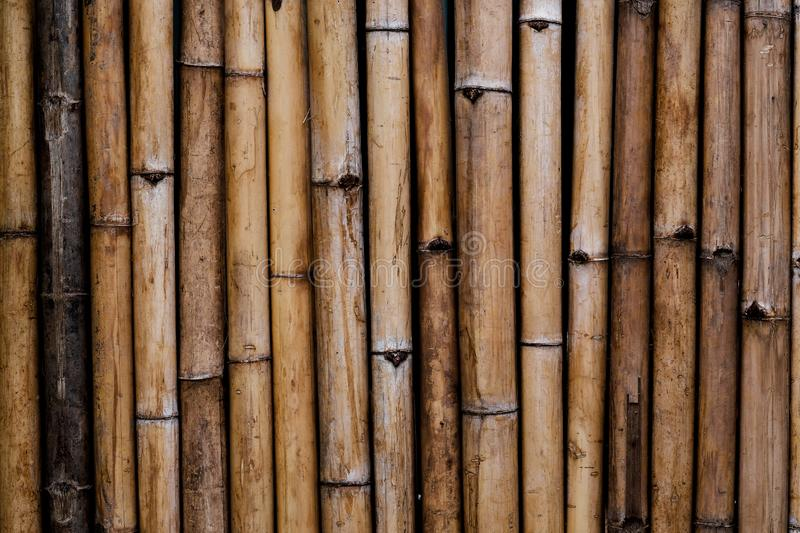 Old bamboo wood wall texture background royalty free stock image
