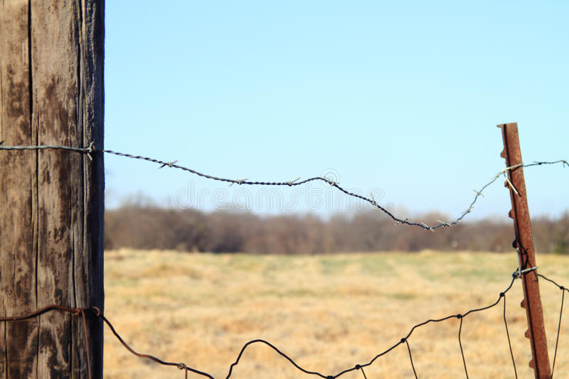 Old barbed wire and cattle fence stock photo image