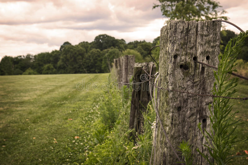 Old Barbed Wire Wood Fence stock photo