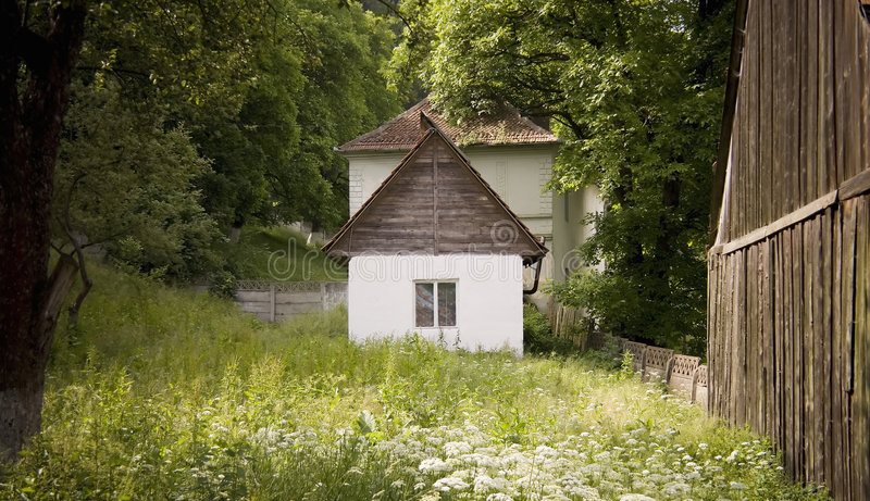 Old barn in forest stock image